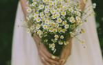 Красивый свадебный букет из ромашек для невесты