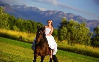 Свадебная фотосессия с лошадьми, собаками — фото и видео пример