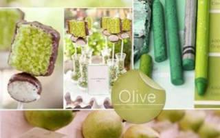 Зеленая свадьба — оформление зала и стола в оттенках оливкового